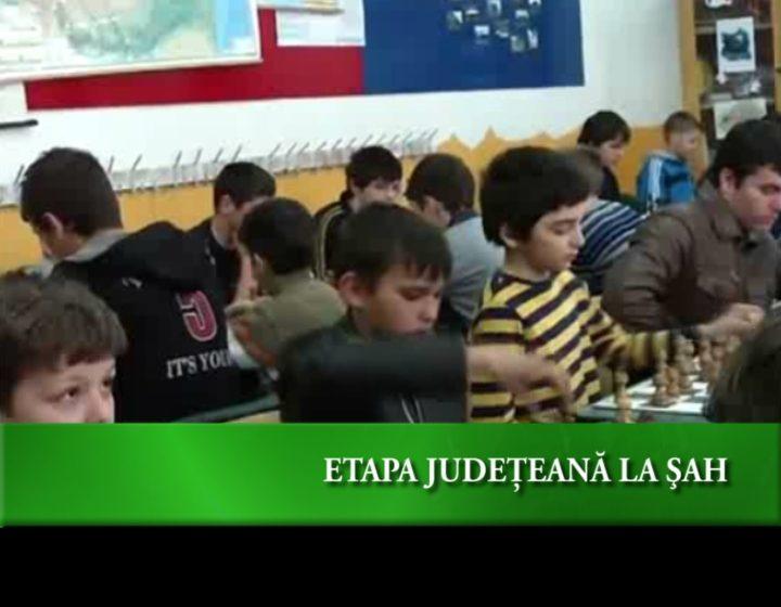 Olimpiada judeţeană de şah