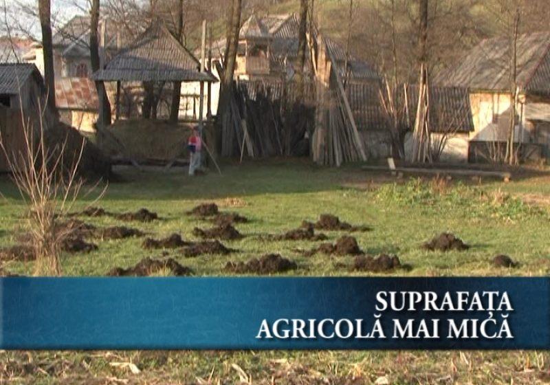 Suprafaţa agricolă mai mică după recensământ