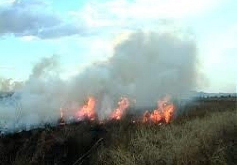 Trei hectare de vegetaţie, incendiate în Satulung, Maramureş