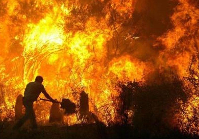 Doua case grav avariate în urma unui incendiu izbucnit pe strada Titu Maiorescu, în Sighetu Marmatiei
