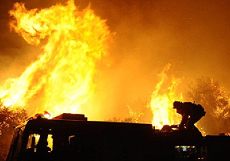 Structuri militare şi civile au intervenit pentru stingerea unui incendiu în zona montană a comunei Bistra