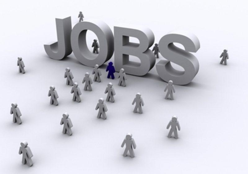 AJOFM  anuţă 202 locuri de muncă vacante pentru Maramureş