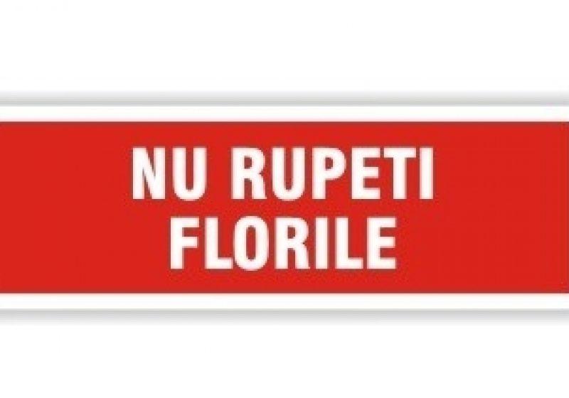 Atenție, nu rupeți florile!