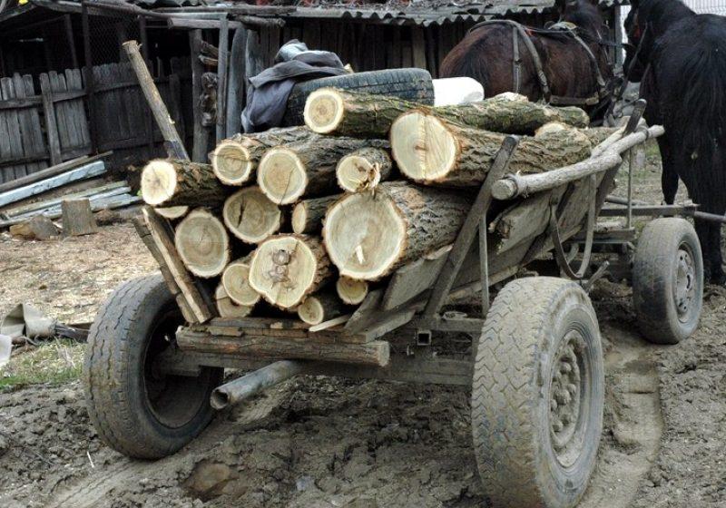 O sigheteancă a căzut victima unei înşelăciuni după ce  a targuit o căruţă de lemne de foc