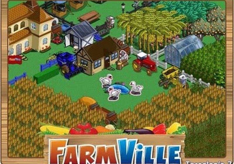 Febra FarmVille a cuprins si tinerii sigheteni