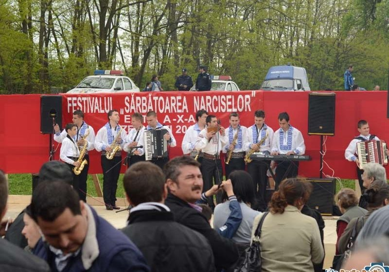 """In acest sfarsit de saptamana, în comuna Repedea va avea loc traditionalul festival  """"Sarbatoarea Narciselor"""""""