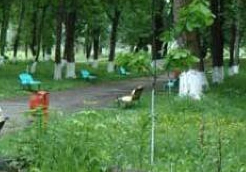 Parcul Grădina Morii a ajuns loc de păşunat