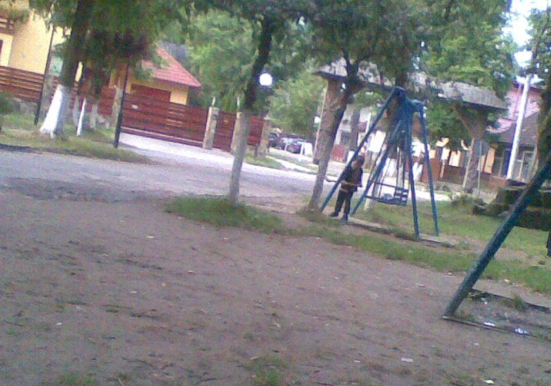 Cu toporul in parcul Gradina Morii…