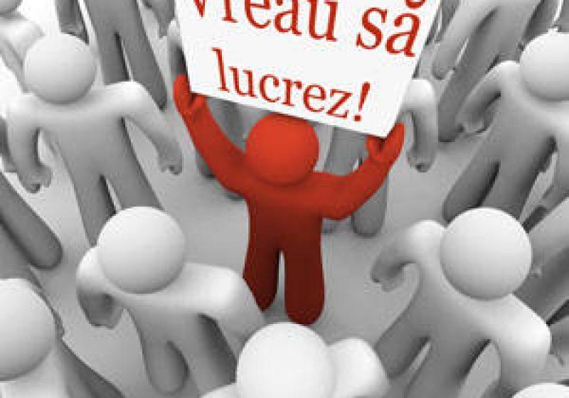 Premieră:Prima bursa a locurilor de muncă destinata exclusiv studentilor si elevilor, vineri, 24 iunie, în Maramures