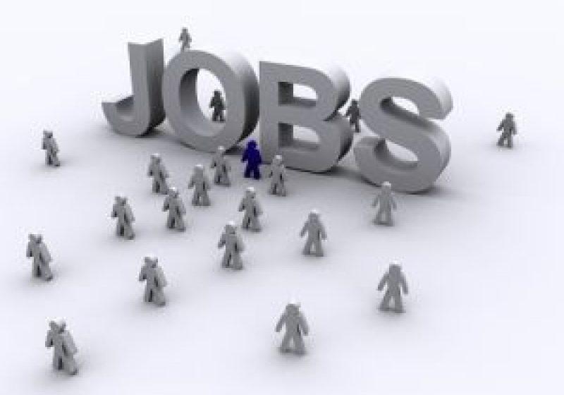 Maramureşenii pot câştiga 1300 de euro pe lună prin oferta locurilor de muncă pusă la dispoziţie prin reţeaua Eures