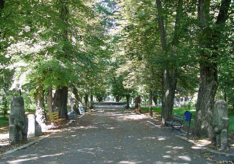 Baia Mare: Restaurantul de la intrarea din Parcul Municipal, contestat de localnicii din zona