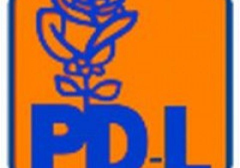 PDL Maramures: 3 nume sonore pentru deputatie, unul … secret