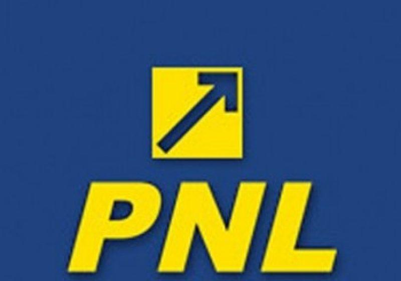 Membrii PNL, filiala Sighet, si-au prezentat bilantul activitatii din ultima perioada