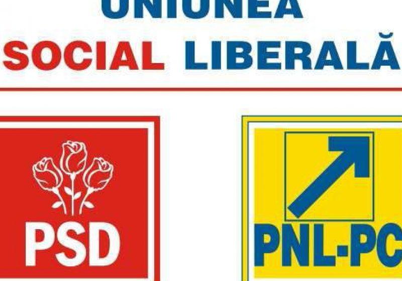 USL a propus preşedintelui schimbarea Guvernului cu unul de tehnocraţi, dar şi alegeri parlamentare anticipate în 2011