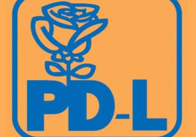 Maramures: Mariana Pop, candidatul oficial al PDL Maramures pentru functia de deputat pe Colegiul 2 Baia Mare Est