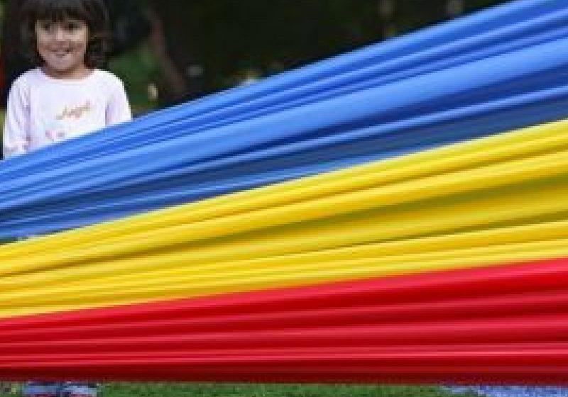 Ziua Limbii Române ar putea fi sărbătorită la 31 august