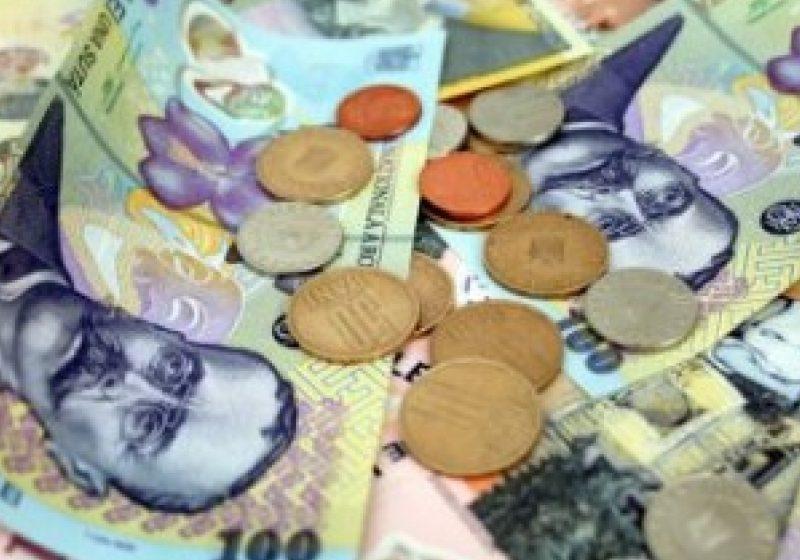 La nivelul Sighetului, Finanţele au de recuperat bani serioşi de la medicii veterinari