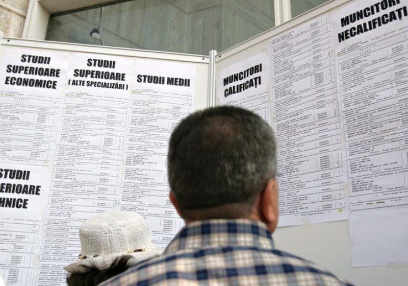 Baia Mare: 124 de locuri de muncă pentru maramureşeni, prin AJOFM Maramureş