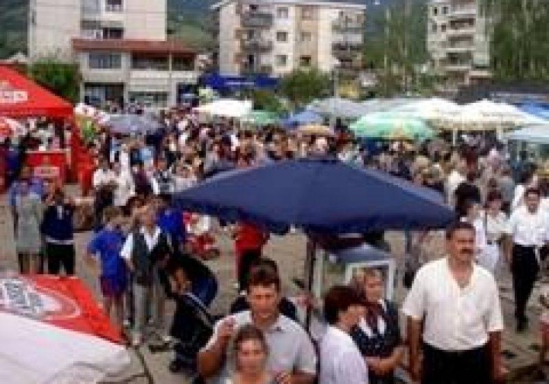 """În perioada 13-15 august,  vor avea loc """"Zilele oraşului"""" Baia Sprie"""