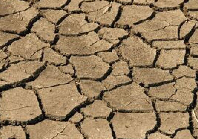 ONU avertizează: 25% din suprafaţa pământului este foarte degradată