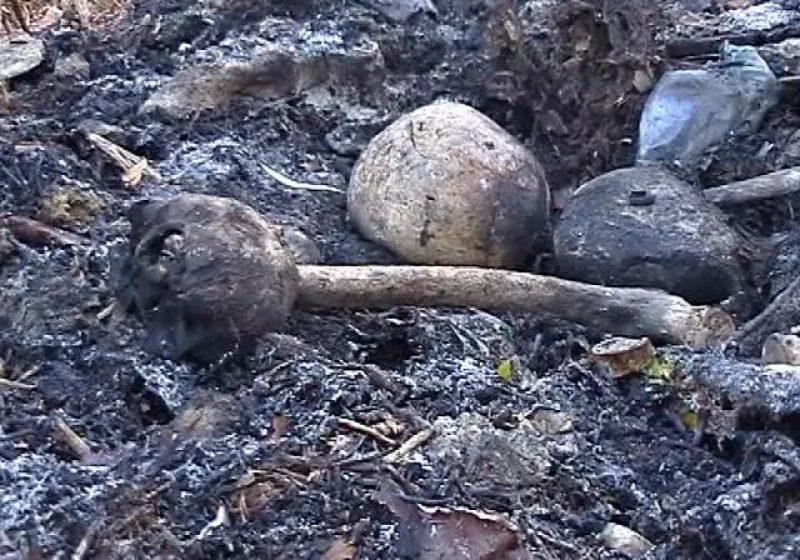 Baia Mare: Scene de groază – Cranii şi membre umane incinerate, descoperite în cimitirul Horea I