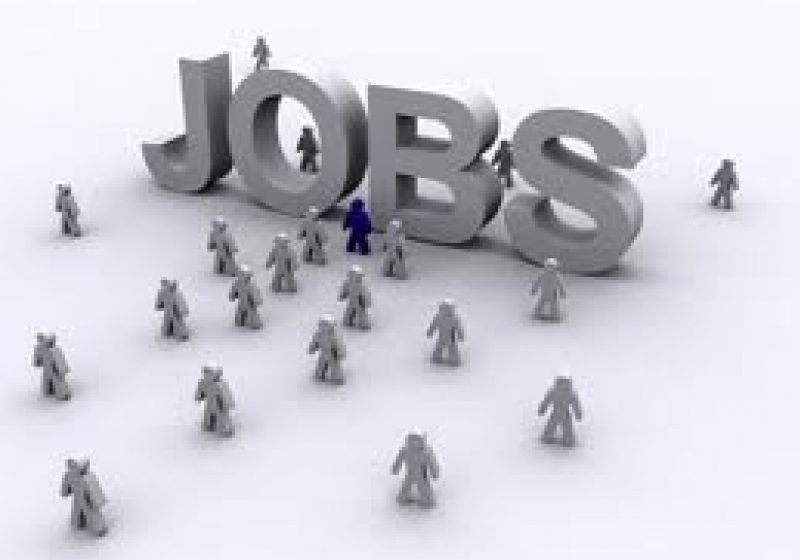 Peste 8.600 de locuri de muncă vacante în perioada 25 noiembrie – 2 decembrie