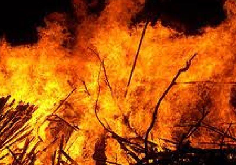 Un incediu izbucnit in Valea Hotarului a distrus un adapost de animale