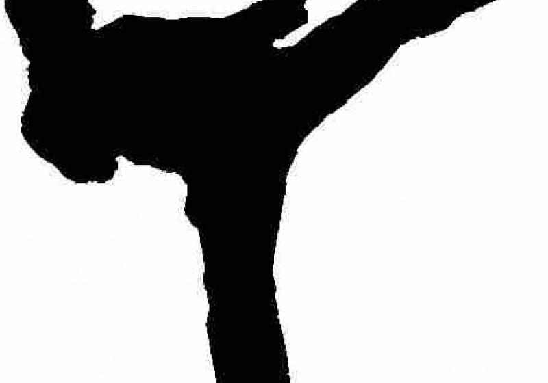 SIGHET: Premieră festivă la Clubul sighetean de karate Kamitza Do