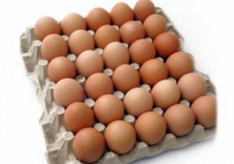 România nu va mai putea comercializa ouăle marcate cu cifra trei, de la 1 ianuarie 2012