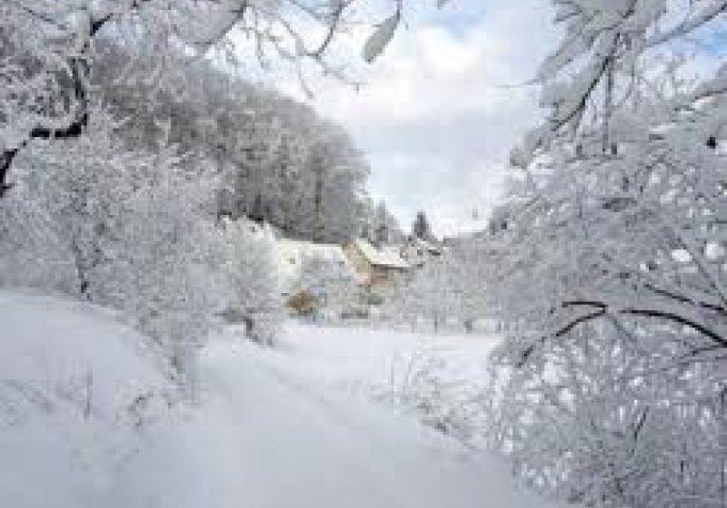 Târgu Lăpuş: – 30 grade Celsius au indicat termometrele în această dimineaţă la sol