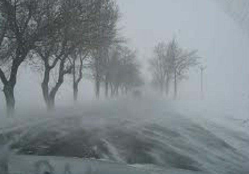 Polei şi vizibilitate redusă de ceaţă în zona localităţilor Târgu Lăpuş şi Fereşti!