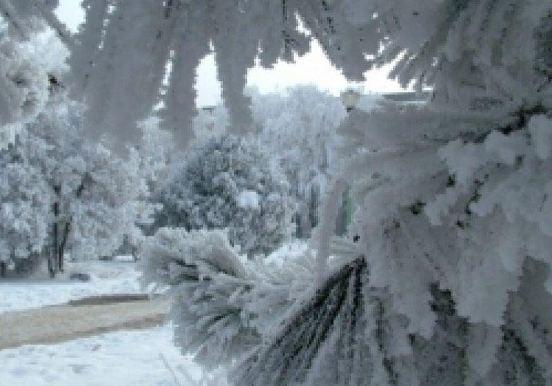 Vreme geroasă în Maramureş