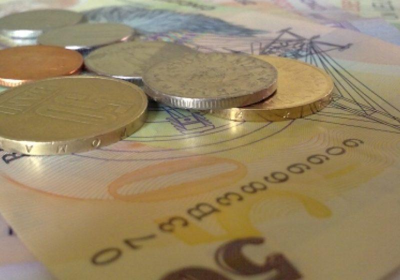 176 de milioane de euro pentru împădurirea terenurilor agricole, în 2012