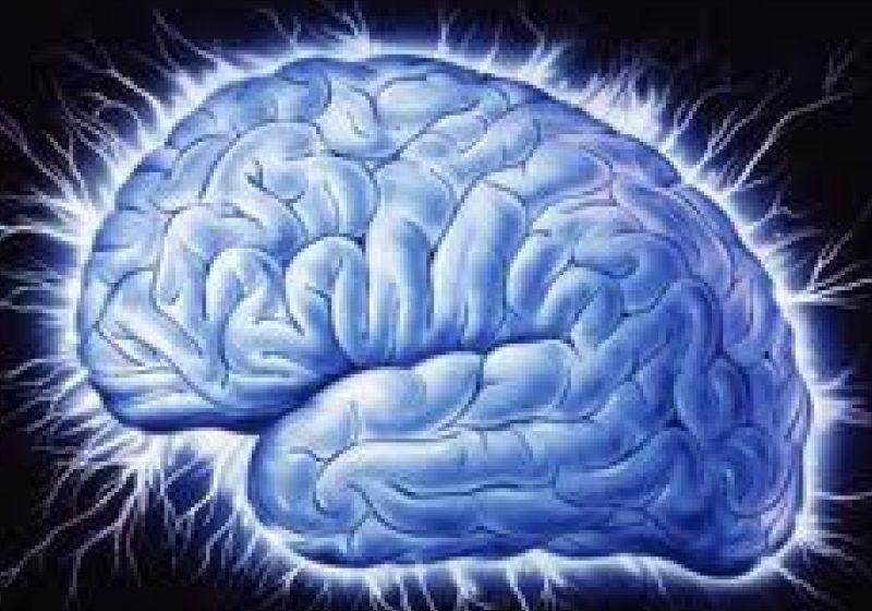 Creierul, o maşină care descifrează automat coduri pornind de la contextualizare