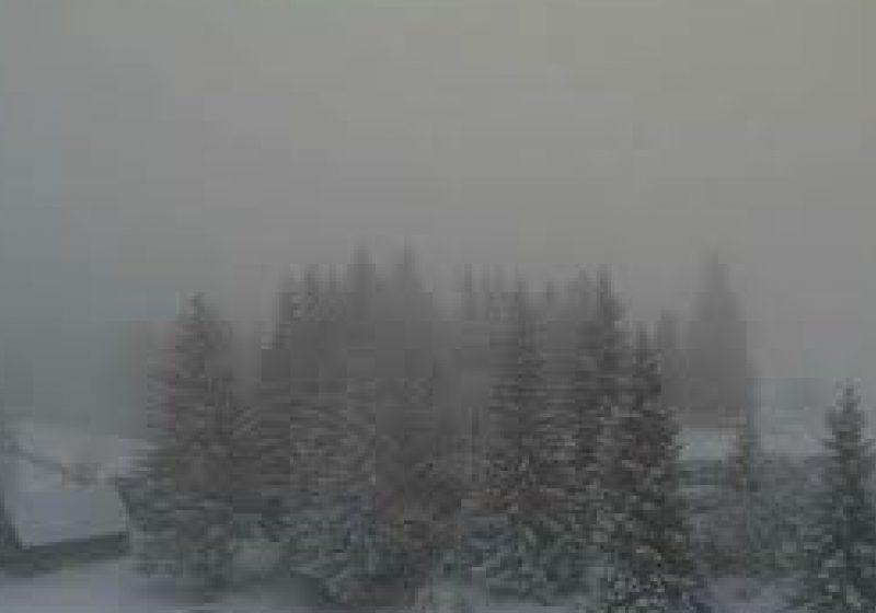 Vizibilitate redusă de ceaţă în Pasul Prislop şi pe DJ184 şi Dj109F