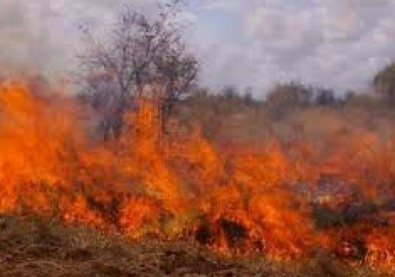 Incendii de vegetaţie în tot Maramureşul