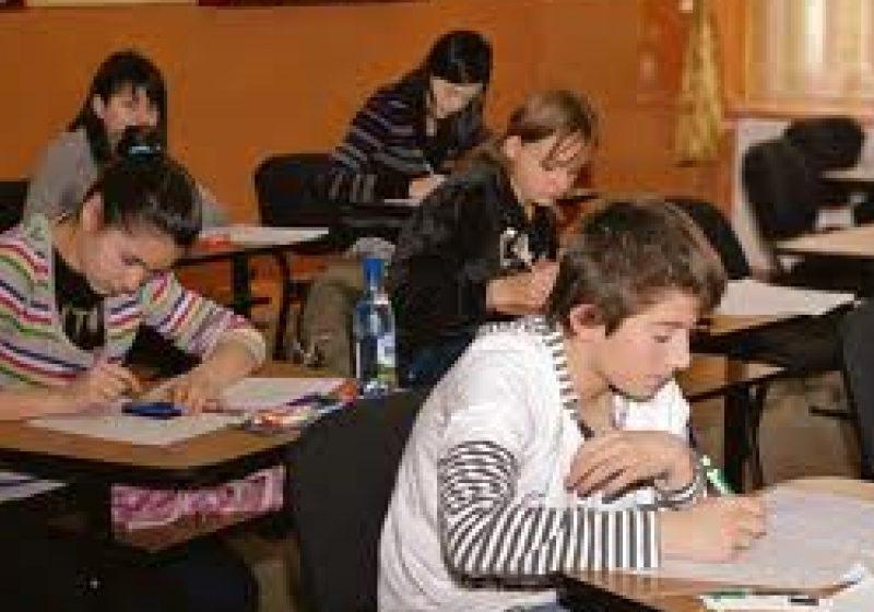 Cinci elevi din Maramureş, calificaţi la faza naţională a olimpiadei de biologie
