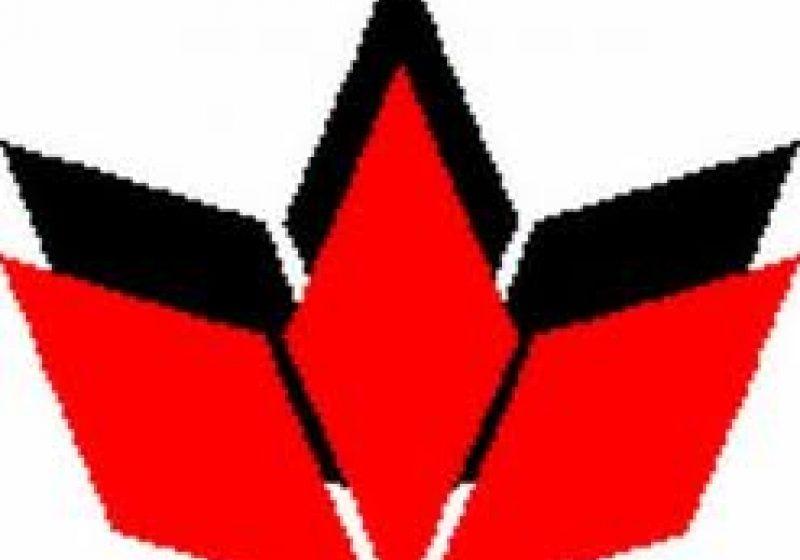 """20 de alesi locali si reprezentanti ai UDMR din judetele Satu Mare si Arad vor participa maine la Bruxelles la masa rotunda """"Transilvania 2020"""""""