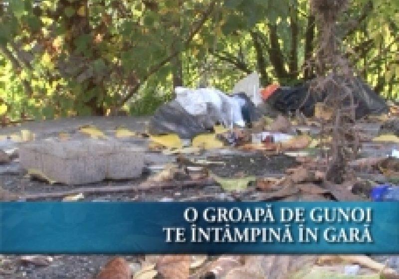 SIGHET: O groapă de gunoi te întâmpină in apropierea garii