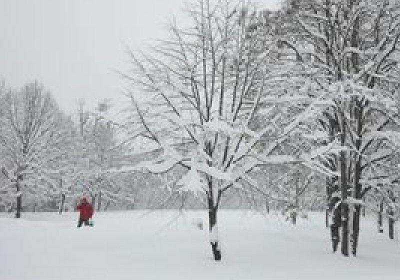 ANM: Ploi, lapoviţe şi ninsori prognozate de către meteorologi după data de 25 noiembrie