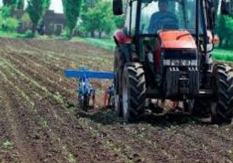 Terenurile agricole se vor scumpi odată cu apariţia reglementărilor ce vor permite comasarea acestora