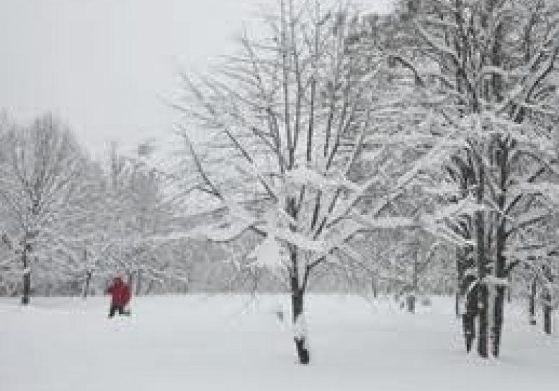 COD GALBEN de ninsori şi viscol, marţi şi miercuri.