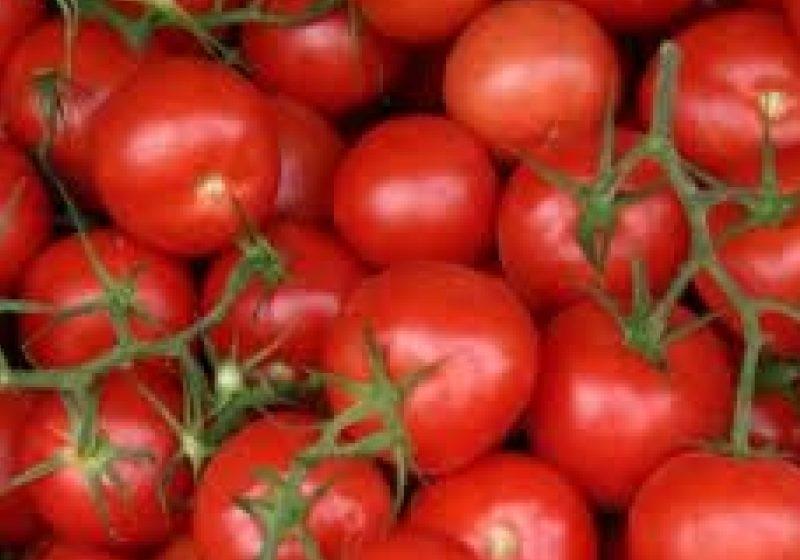 Video | Cum e cu producția de legume în spații protejate