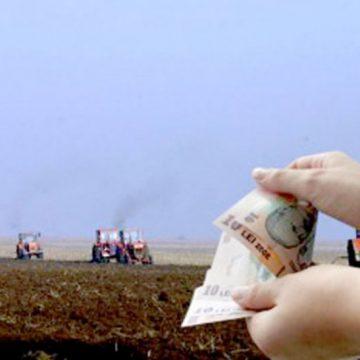 VIDEO | APIA –  se apropie data limită de depunere, fără penalități, a cererilor unice de plată
