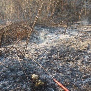 VIDEO   Weekend cu foc, cele mai multe au fost incendiile de vegetație