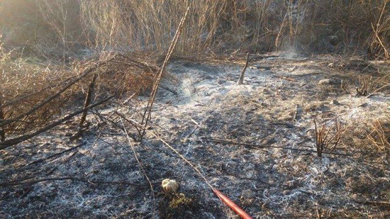 VIDEO | Atenționare pentru fermieri, să nu se joace cu focul