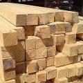 Depozite de lemne luate la puricat
