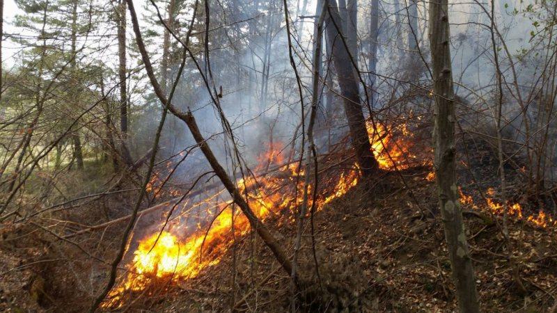 Video | Pompierii vin cu sfaturi pentru prevenirea incendiilor de toamnă