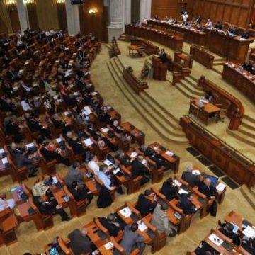 VIDEO | Cine va reprezenta Maramureșul în Parlament