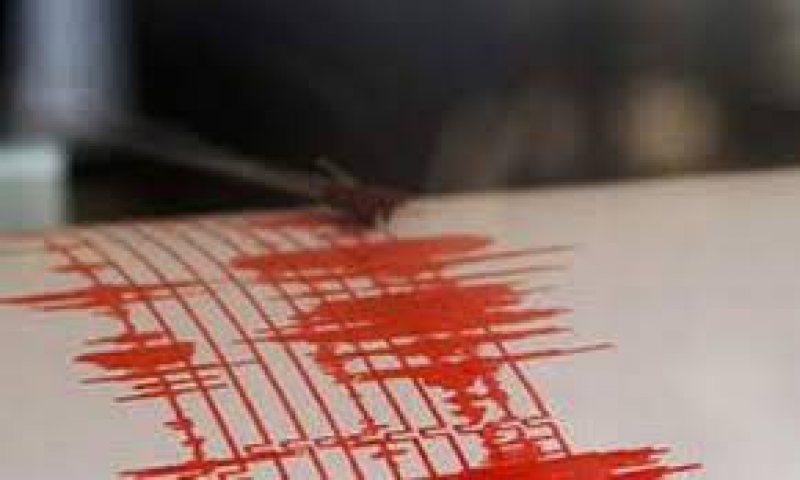 VRANCEA: Cutremur cu magnitudinea de 2,6 grade